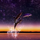 Dolphin Star