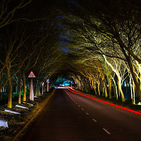 End of the tunnel by Marc Anderson - City,  Street & Park  Street Scenes ( umhlanga, durban, rocher photography, marc anderson )