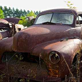 Early Morning Junkyard Blues by Roy Walter - Transportation Automobiles ( car, old, automobile, junkyard, transportation, rust )