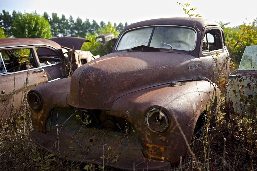 Early Morning Junkyard Blues by Roy Walter - Transportation Automobiles ( car, old, automobile, junkyard, transportation, rust )