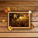 Free Frame Picture Theme icon