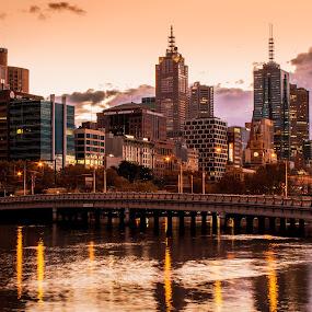 Melbourne Morning by Matt Simner - City,  Street & Park  Skylines ( queens bridge, yarra river, melbourne, southbank, sunrise )