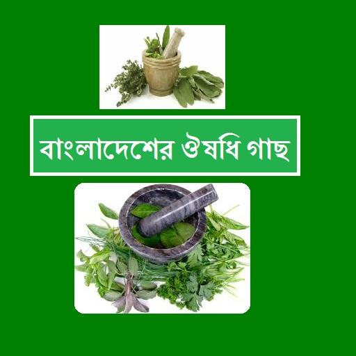 Bangladeshi Herbal Treatment