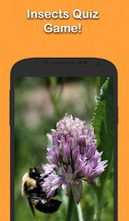 Insect Trivia screenshot