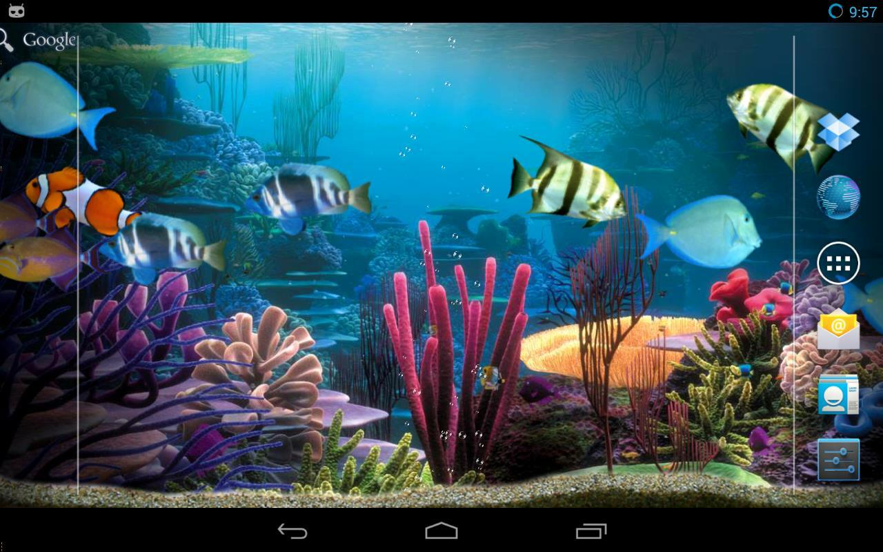 Tropical fishes aquarium- screenshot