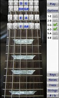 Screenshot of Electric Guitar Fretboard FREE