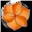 Fractal Imaging logo