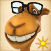 Magic Camel