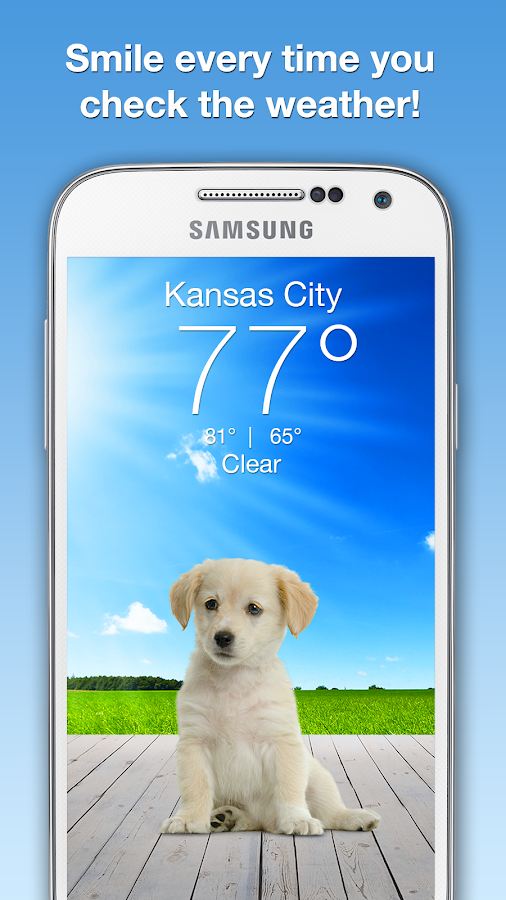 Weather Puppy- screenshot