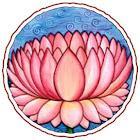 LotusKid