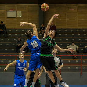 STELLA AZZURRA by Nando Scalise - Sports & Fitness Basketball