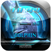 DOLPHIN3 clock widget