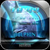 DOLPHIN3 clock widget