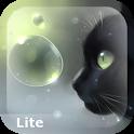 Curious Cat Lite icon