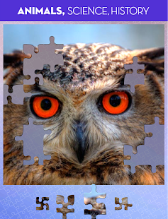 100 PICS Puzzles - FREE Jigsaw Screenshot 19