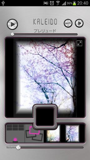 KALEID~四季彩の桜で奏でるメヌエット