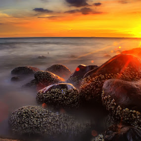 stone at taplau by Fajar Vandra - Landscapes Sunsets & Sunrises