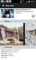 Screenshot of Dogs Breeds FREE