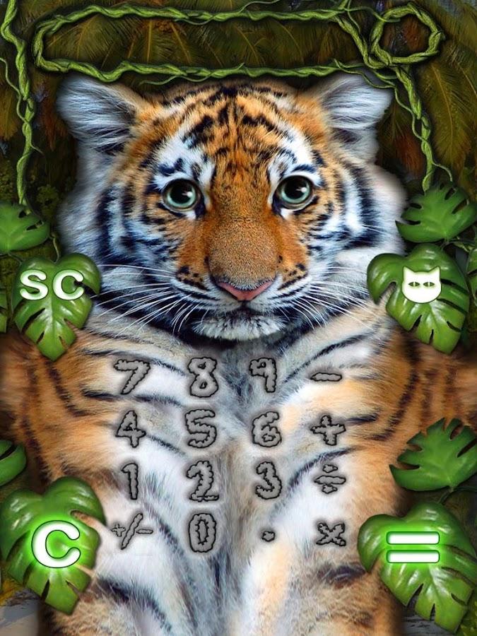 Kitten Calculator - screenshot