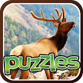 Free Forest Animal Puzzles