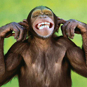 Talking Funny Monkey Free LWP icon