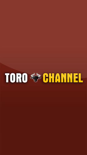 Toro Channel