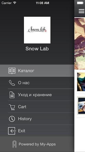 Snow Lab
