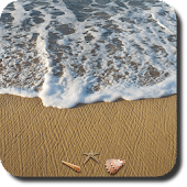 Beach Live Wallpaper +