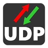 UDP RECEIVE and SEND PRO