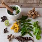 Ayurvedic Plants and Herbs icon