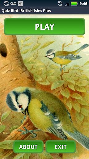 Quiz Bird: British Isles Plus