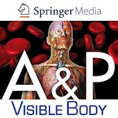 Anatomy & Physiology Springer