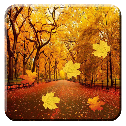 download autumn leaves live wallpaper for pc
