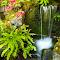 pixoto.meditation.garden (1 of 1).jpg