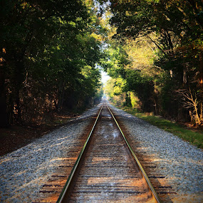 But To Where? by Roy Walter - Transportation Railway Tracks ( train, tracks, transportation, shade, railway tracks )