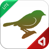Indian Birds - Lite
