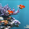 Aquarium Live Wallpaper - Fish icon