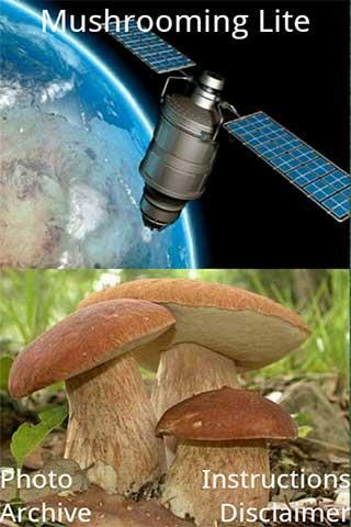 Mushrooming Lite