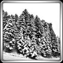 Snowfall 360° Live Wallpaper icon