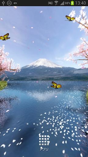 Mt. Fuji Sakura