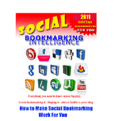 SocialBookmarkingIntelligence