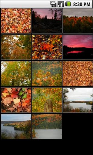 Algonquin Park Seasons Autumn