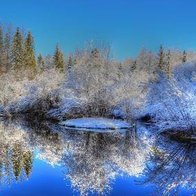 The Wintering Pond by Skye Ryan-Evans - Landscapes Waterscapes ( winter snow, reflection, pond reflection, lake, winter forest, woods, winter scene, winter, pool, christmas scene, trees, reflective water, pond )