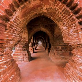 Magic of Bricks by Debasis Banerjee - Buildings & Architecture Architectural Detail ( temple, west bengal, terrocatta temple, bishnupur, hindu temple, tourism )