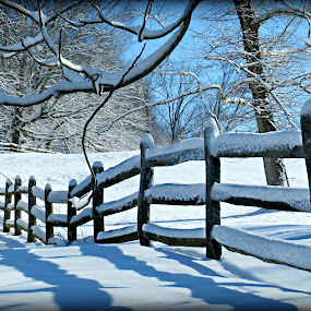 by Stacy Knighton - Landscapes Weather