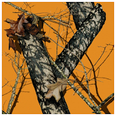 Mossy Oak Orange Theme
