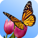3D Butterfly Garden Wallpaper icon