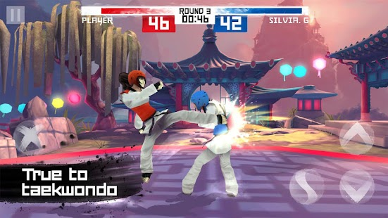 Taekwondo Game Screenshot 1