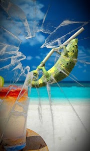 Beach chameleon lwp Free screenshot 0