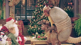 第10話「アルマジロ・クリスマス」